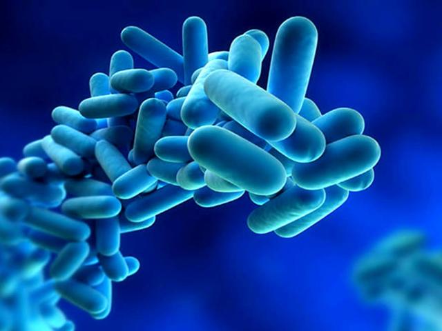 Acqua destinata al consumo umano e rischio Legionella